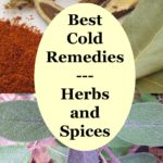 "text ""Best Cold Remedies"", surrounded by herbs"
