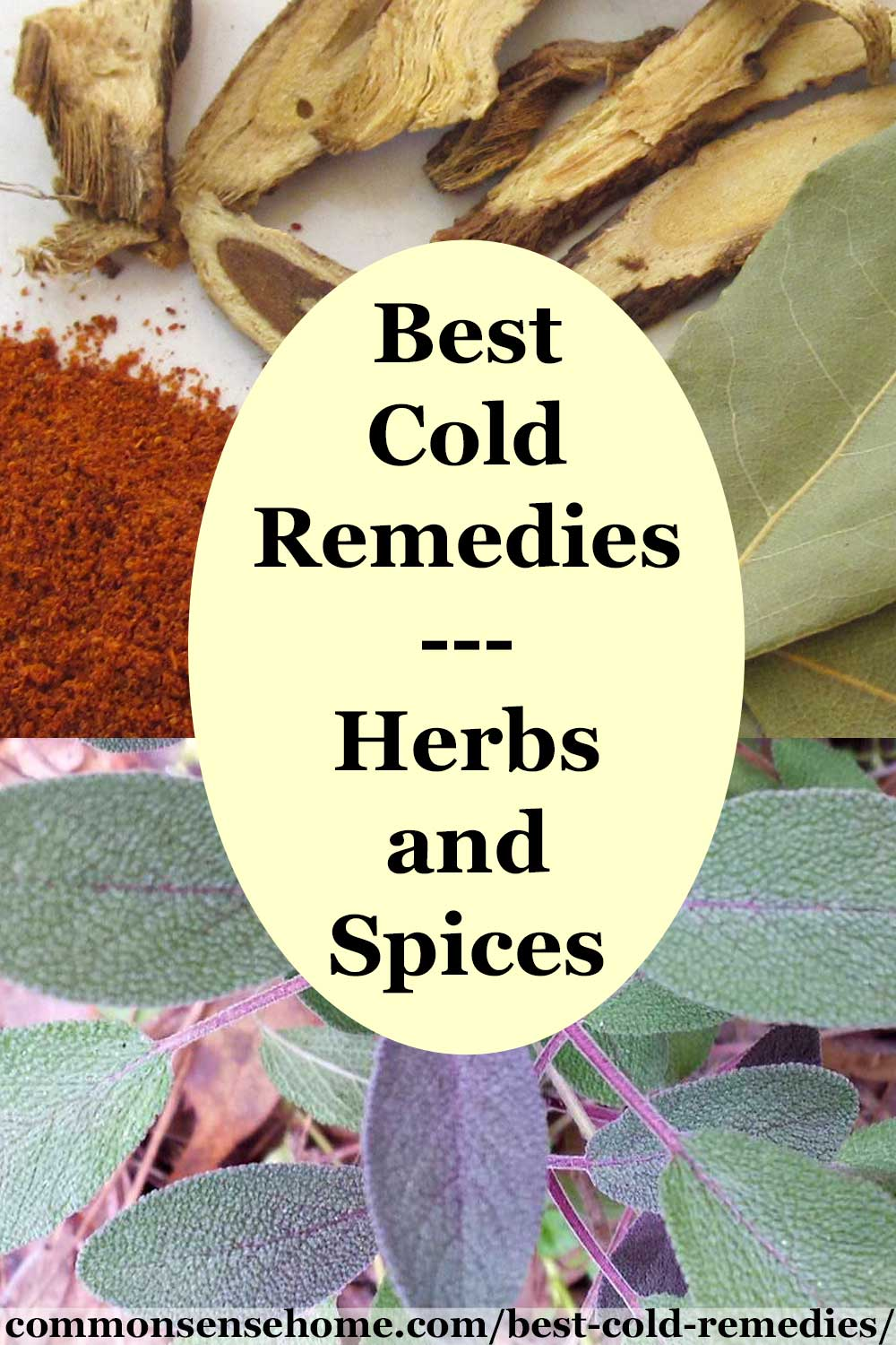 "Black text on yellow background ""Best Cold Remedies - Herbs and Spices"", surrounded by cold fighting herbs and spices"