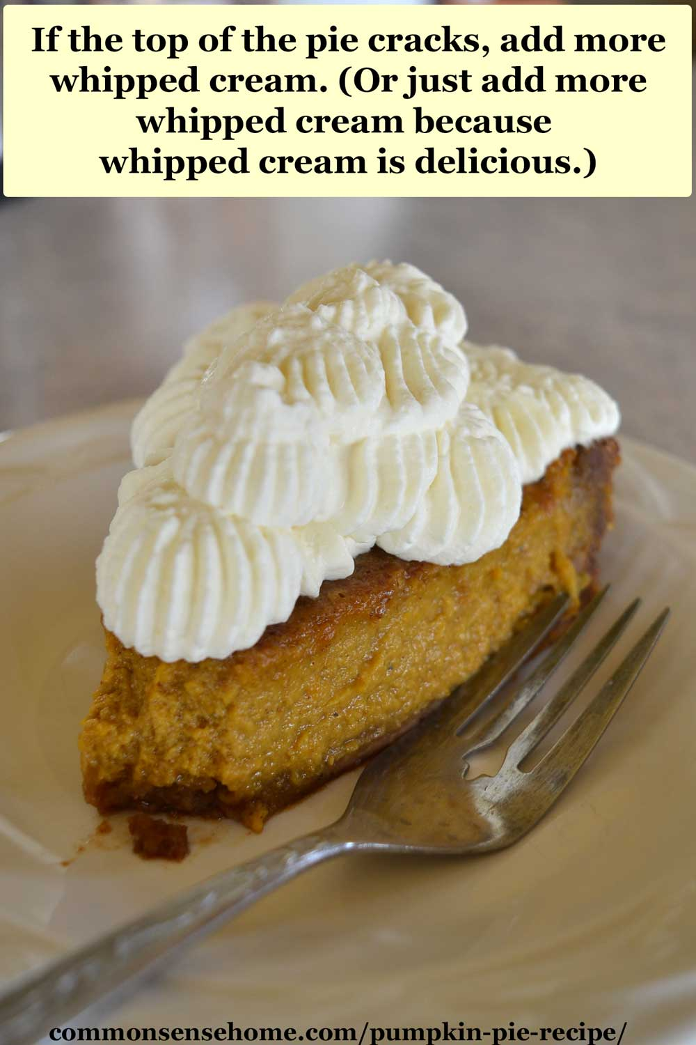 pumpkin pie slice with tons of whipped cream