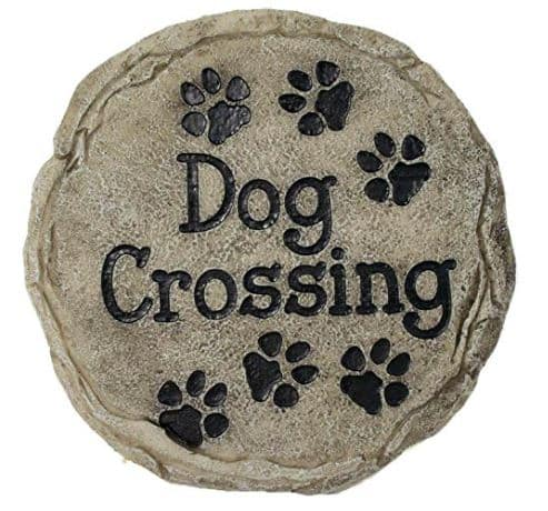 dog crossing stepping stone