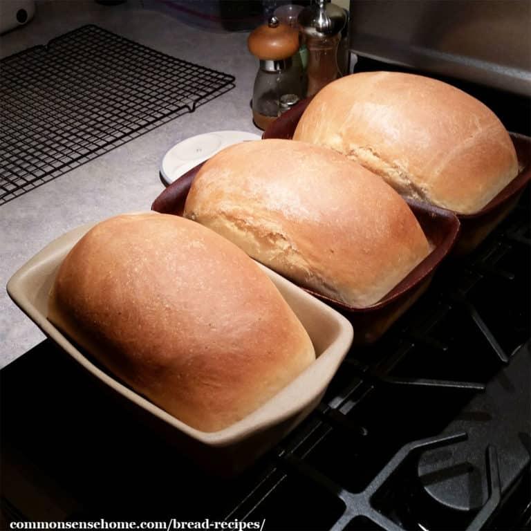 13 Easy Homemade Bread Recipes – Never Buy Bread Again