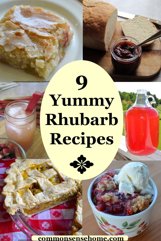 yummy rhubarb recipes