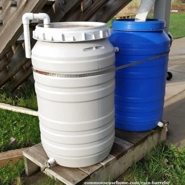 Rain Barrels – DIY, Cheap, Decorative Options (+ Care Tips)