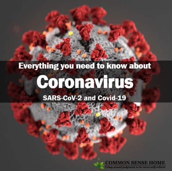 Everything you need to know about coronavirus with CDC virus image - for Commonsensehome.com
