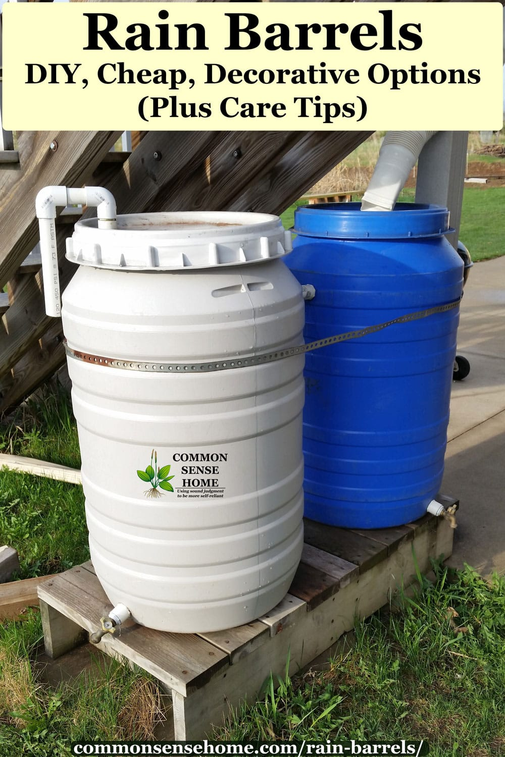 two 50 gallon drum rain barrels