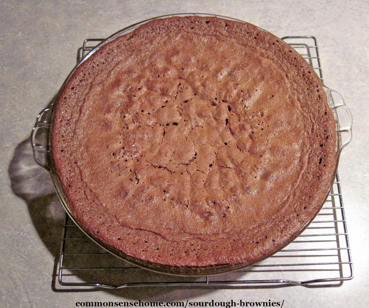 pan of sourdough brownies