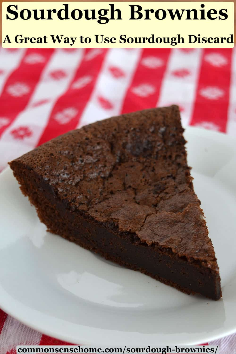 slice of sourdough brownies