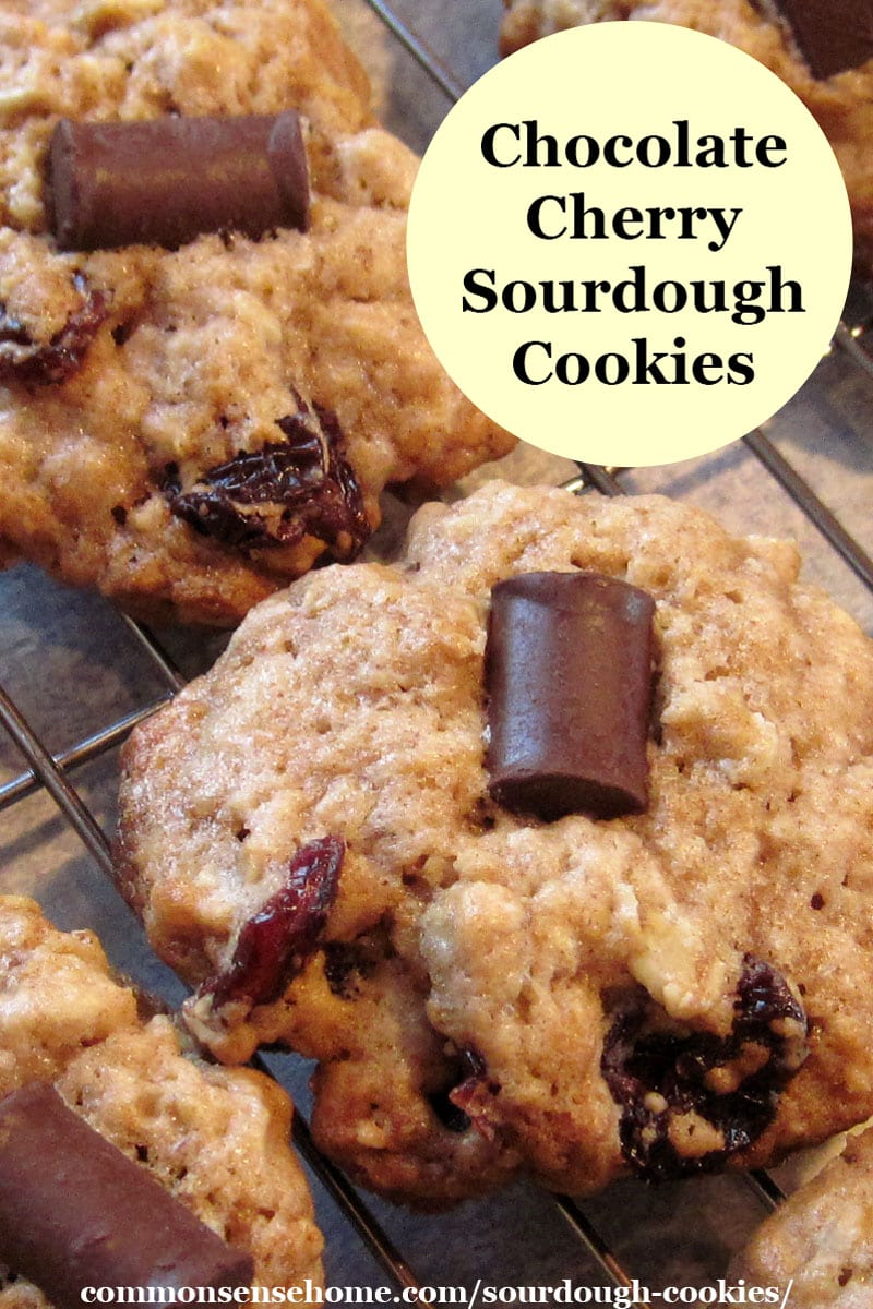 chocolate cherry sourdough cookies with oatmeal