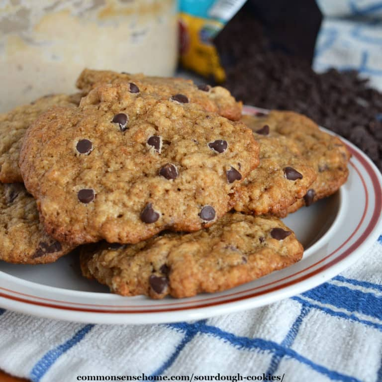 Sourdough Cookies (Easy Recipe with Dairy Free Option)