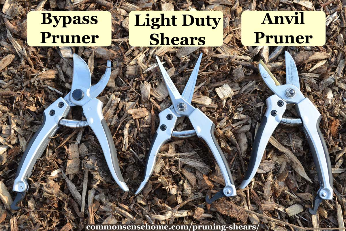 3 types of pruning shears - bypass, light duty, anvil