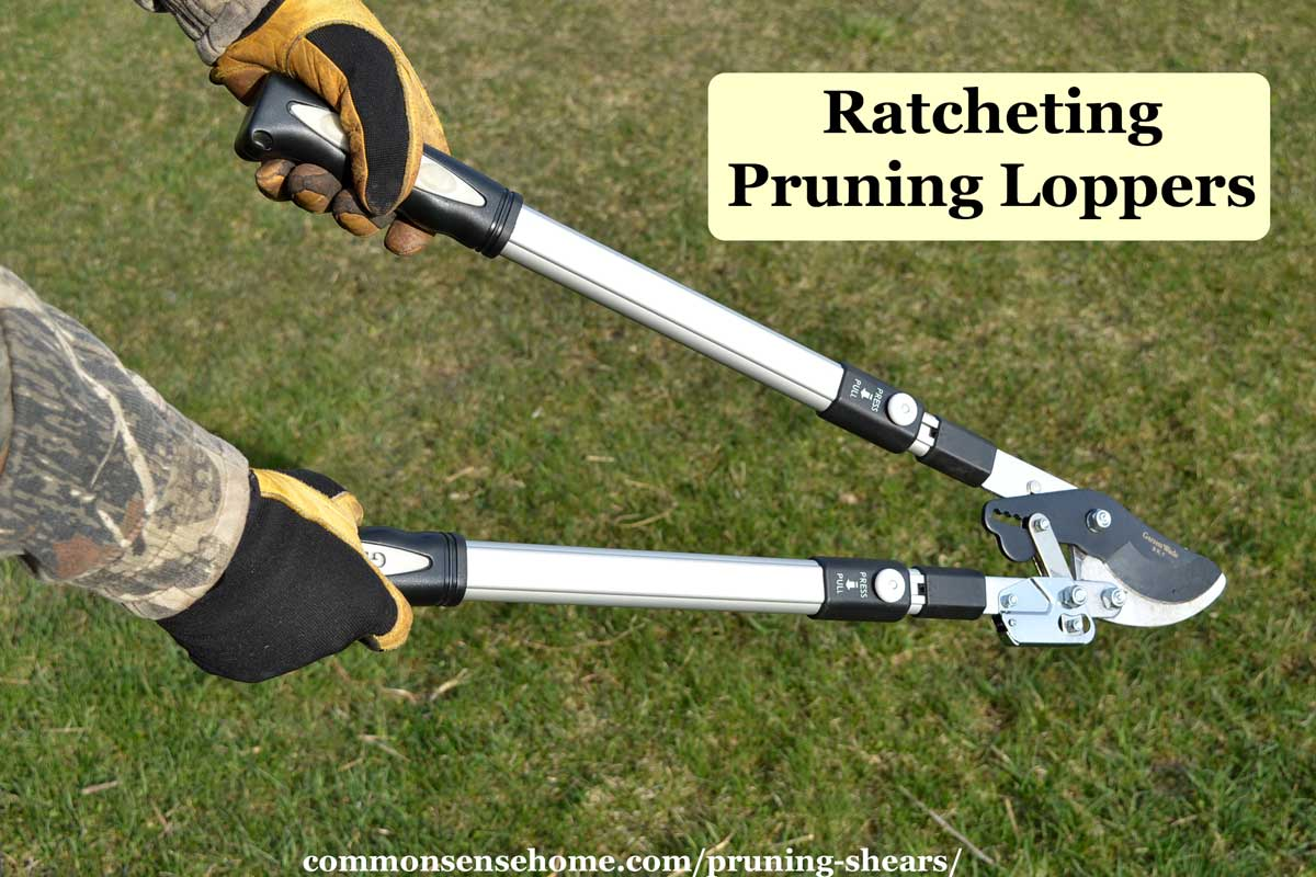 ratcheting pruning loppers