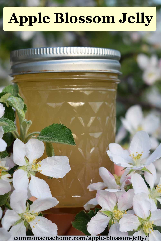 Apple Blossom Jelly Recipe