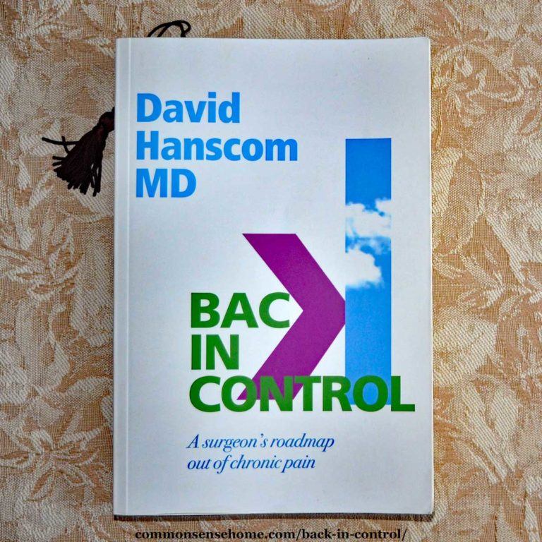 """""""Back in Control – A Surgeon's Roadmap Out of Chronic Pain"""" Review"""