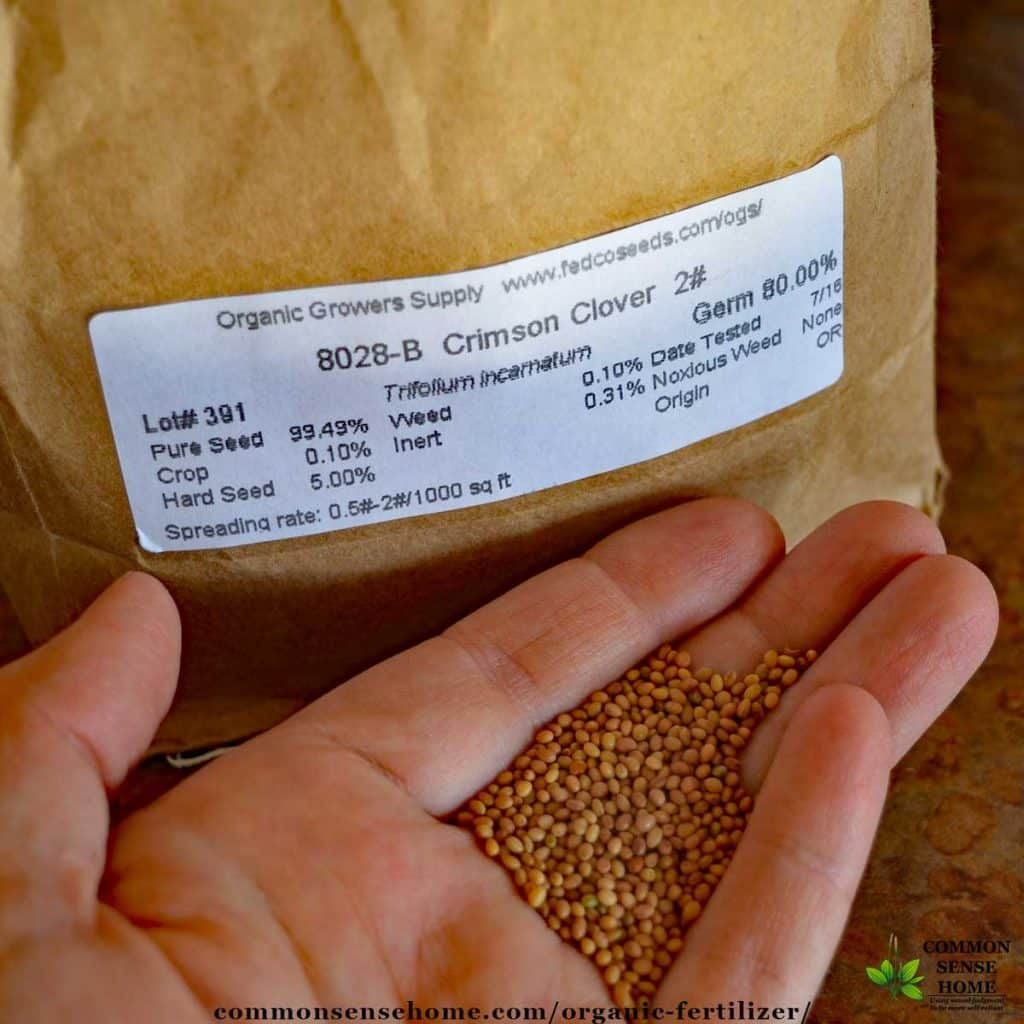 Clover seed to plant a clover cover crop for organic fertilizer.