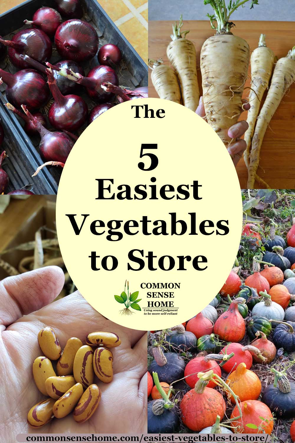 "Text ""The 5 Easiest Vegetables to Store"", surrounded by vegetable photos"