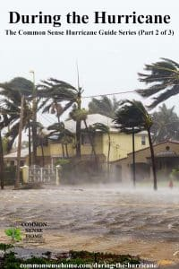 during the hurricane - rain falling and wind blowing palm trees in front of house