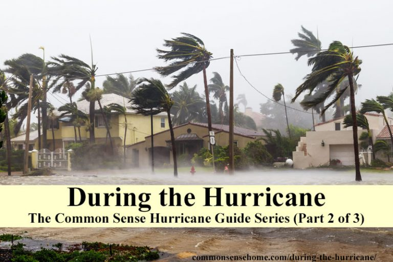 During the Hurricane – The Common Sense Hurricane Guide Series (Part 2 of 3)