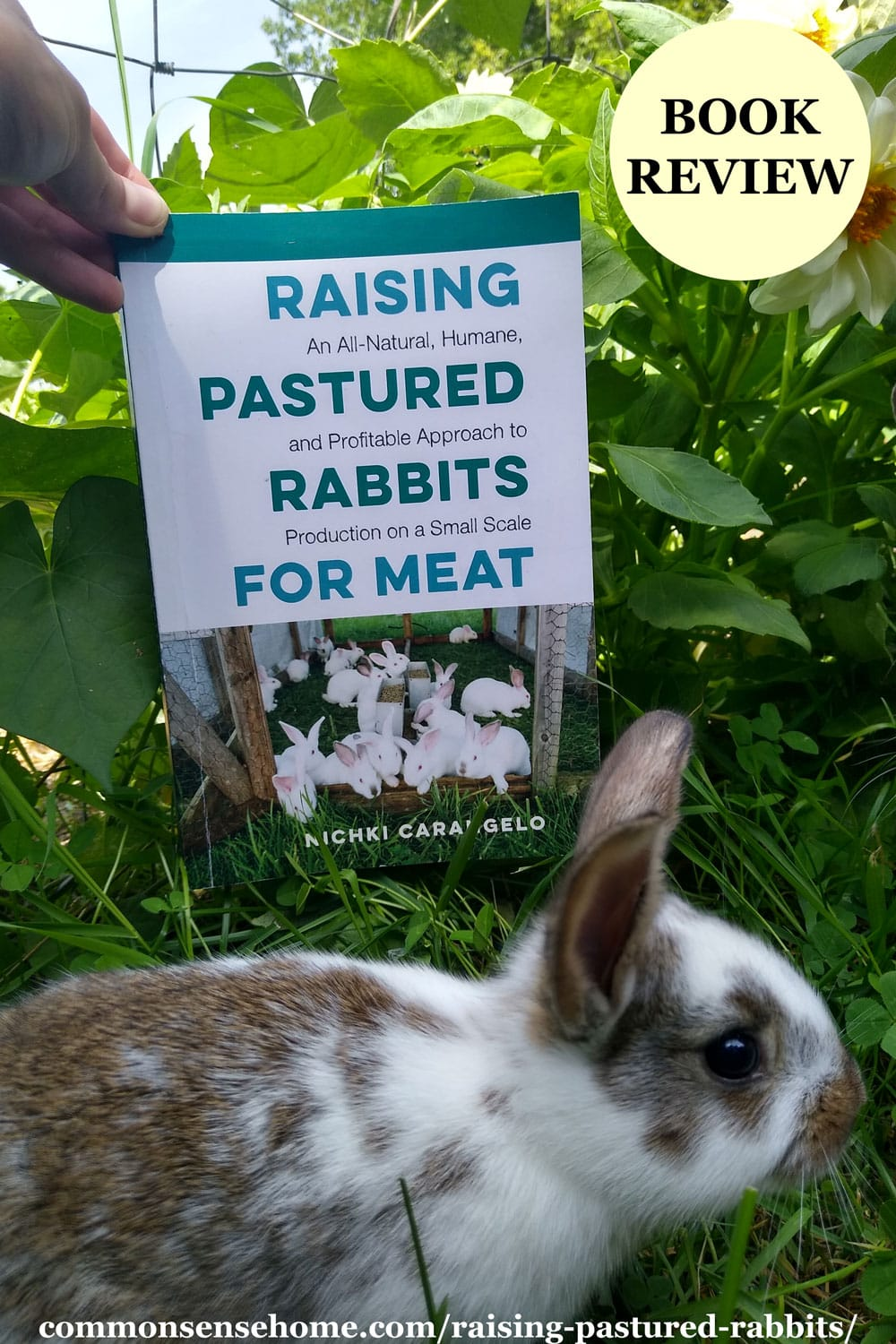 Pastured Rabbits for Meat book with rabbit
