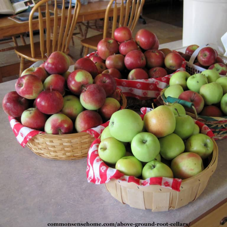 Above Ground Root Cellars – Enjoy Your Local Produce Longer