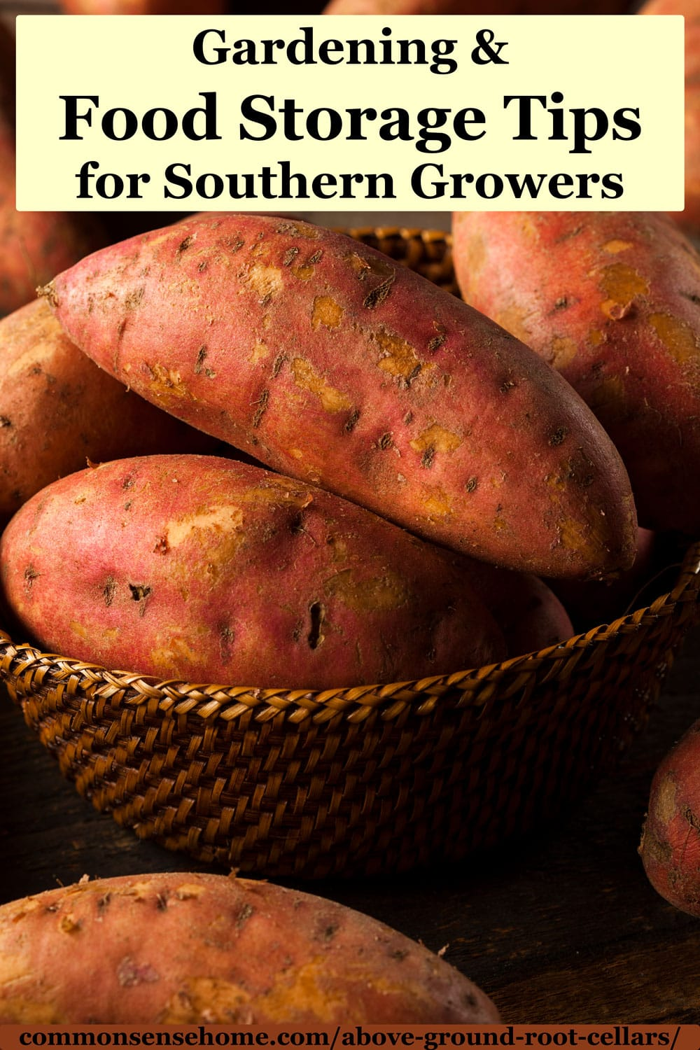 Gardening and Food Storage Tips for Southern Growers