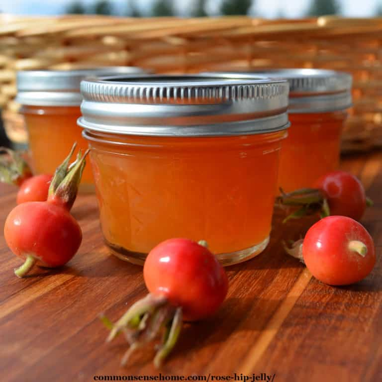 Rose Hip Jelly from Wild or Garden Roses (Low Sugar)