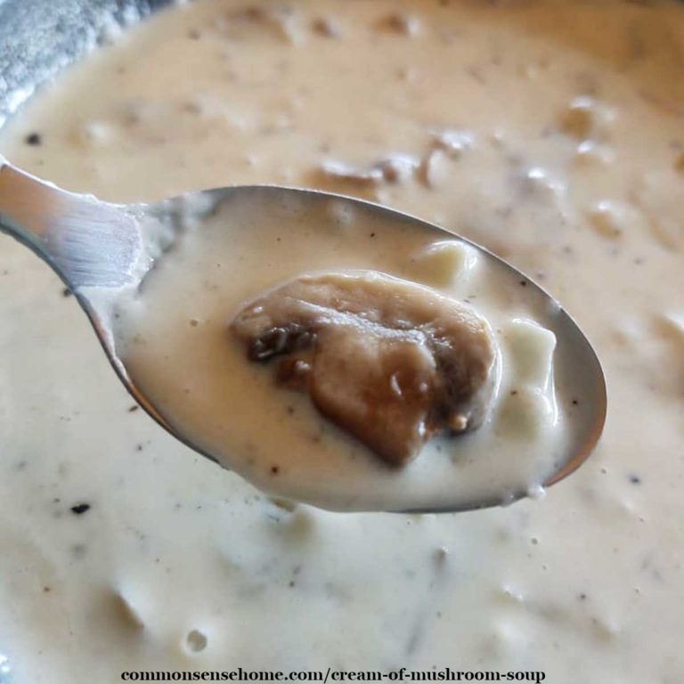 Cream of Mushroom Soup  (Gluten Free, Dairy Free Options)