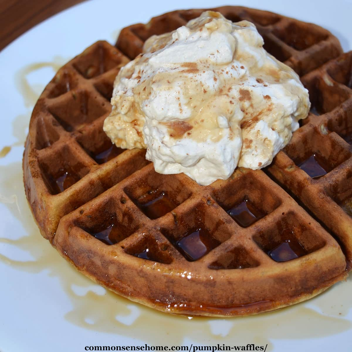 pumpkin waffle with maple cinnamon whipped cream