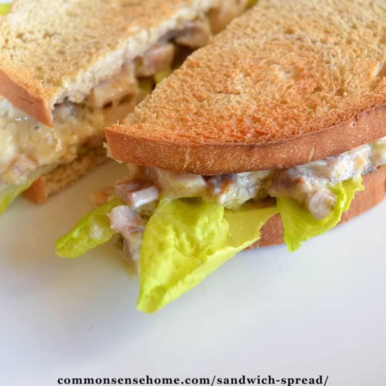 3 Ingredient Sandwich Spread Recipe for Sandwiches or Dip