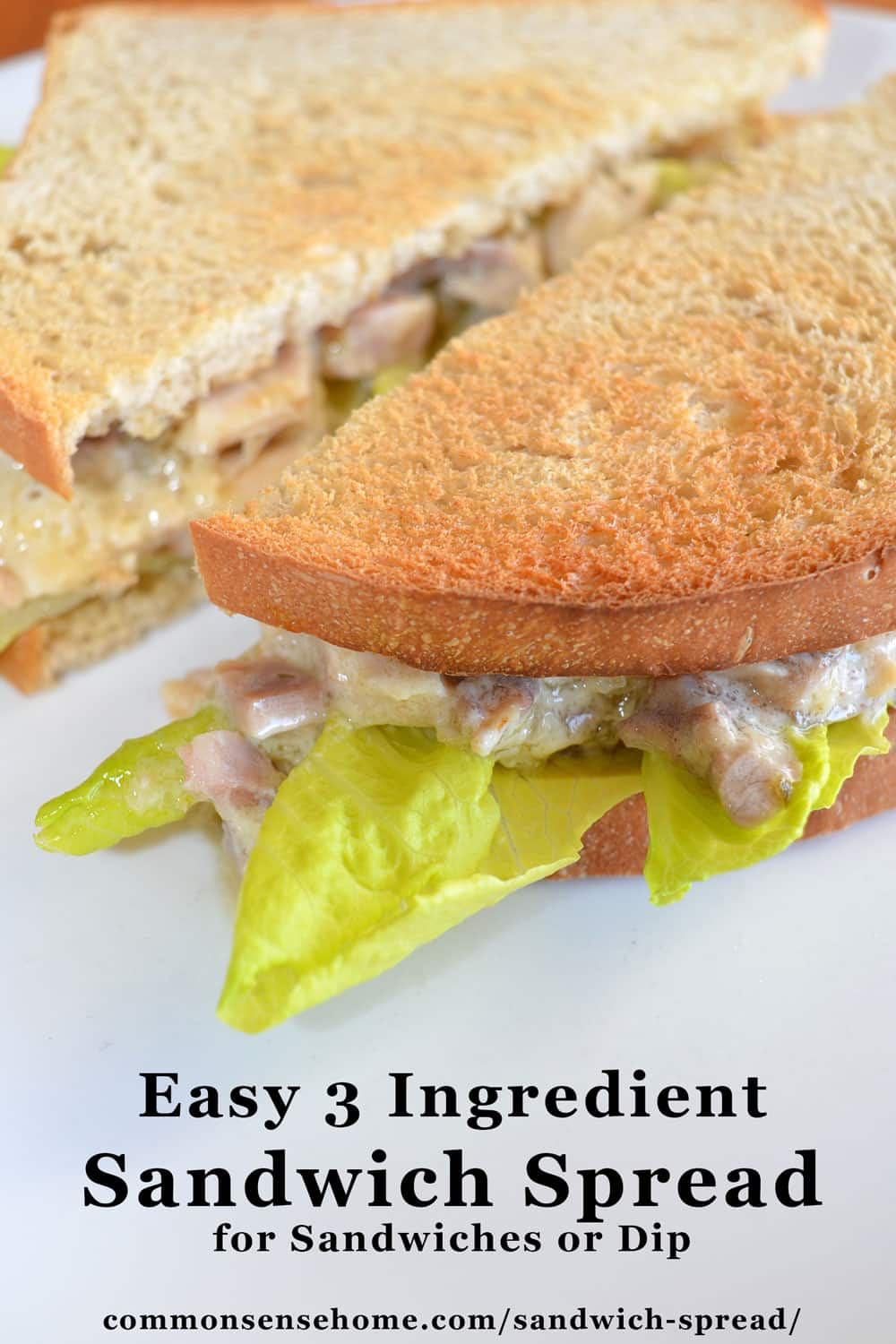 sandwich spread with mayo