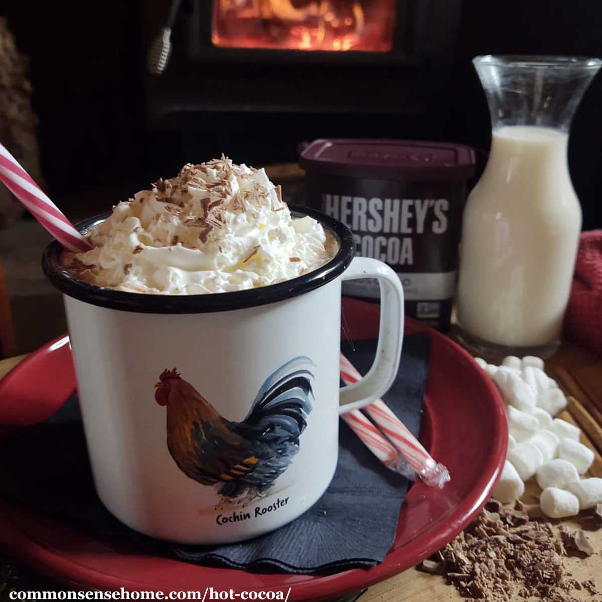 homemade hot cocoa with whipped cream