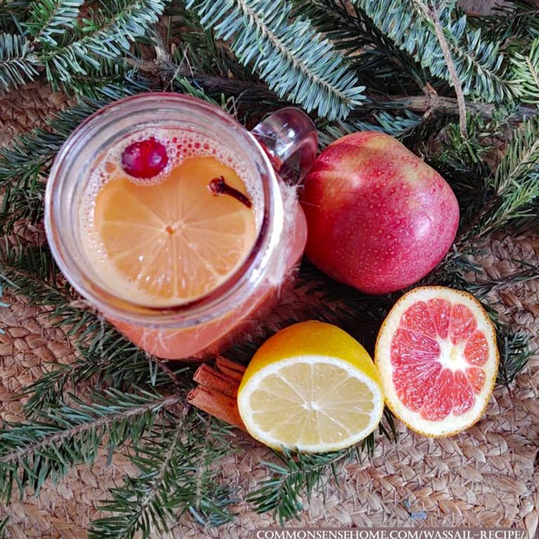 Easy, Delicious Wassail Recipe (It Smells Like Christmas!)