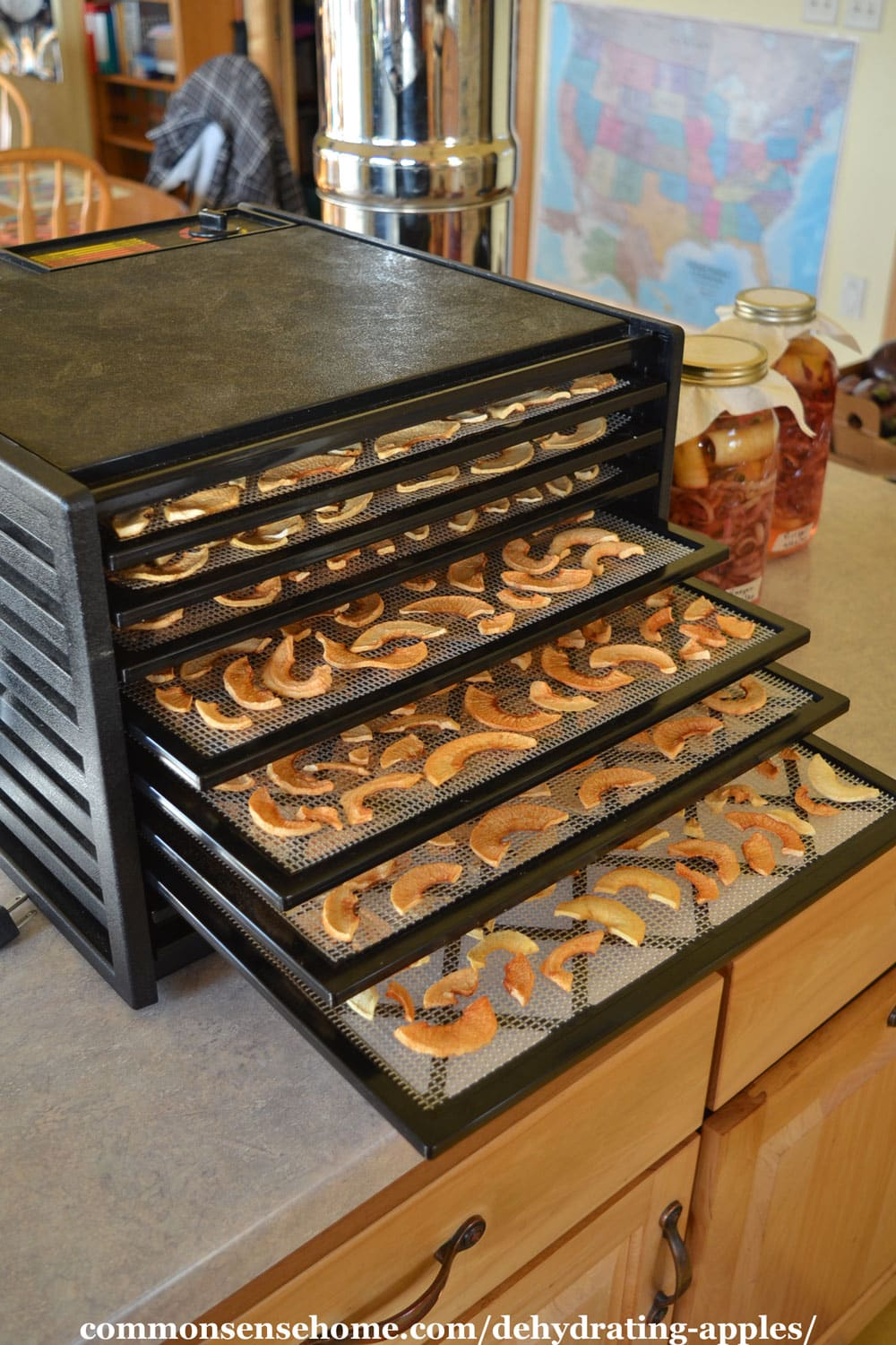 Dehydrated apples in Excalibur dehydrator