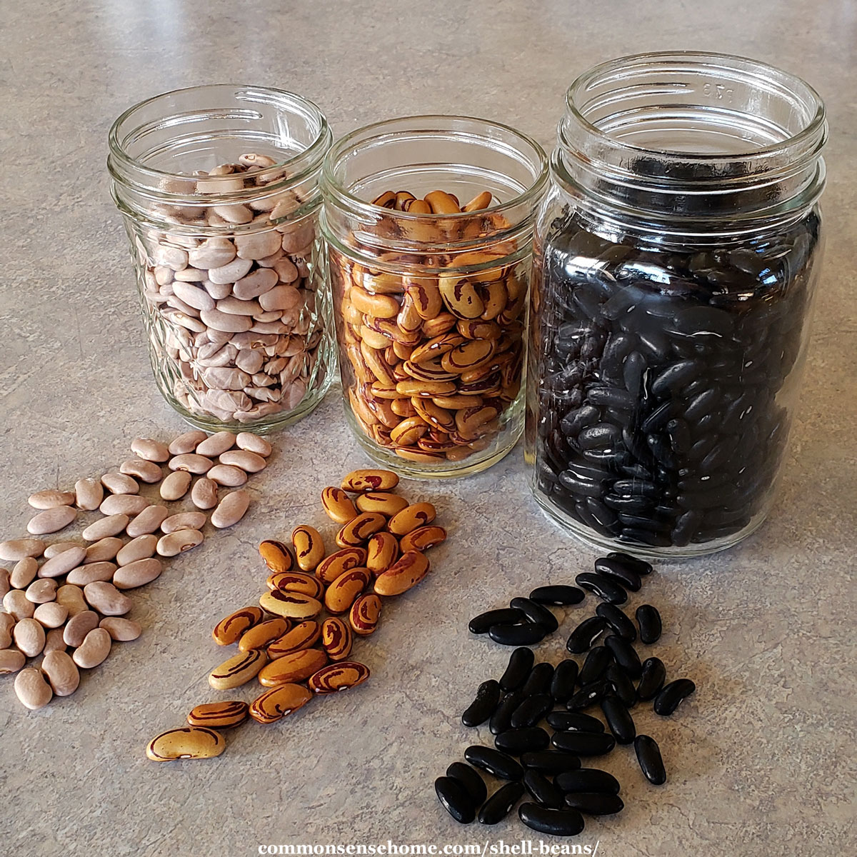 three types of dried beans in mason jars