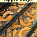 easy homemade apple chips