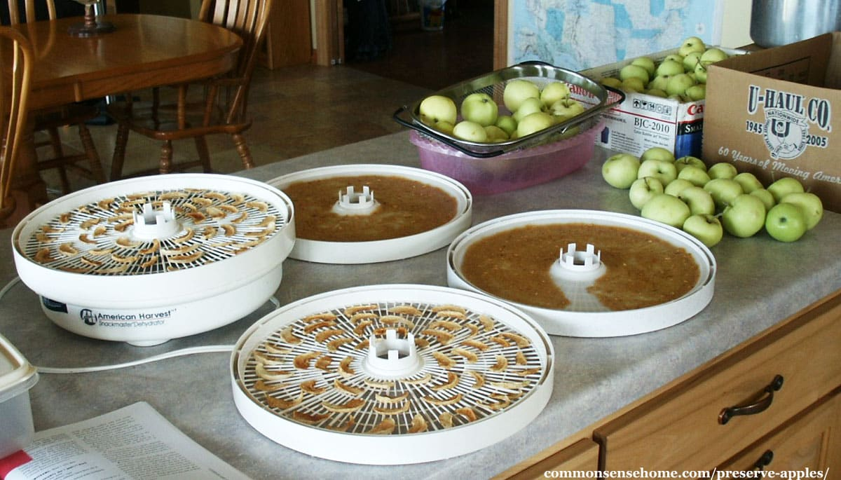 Preserving apples by dehydrating slices and sauce