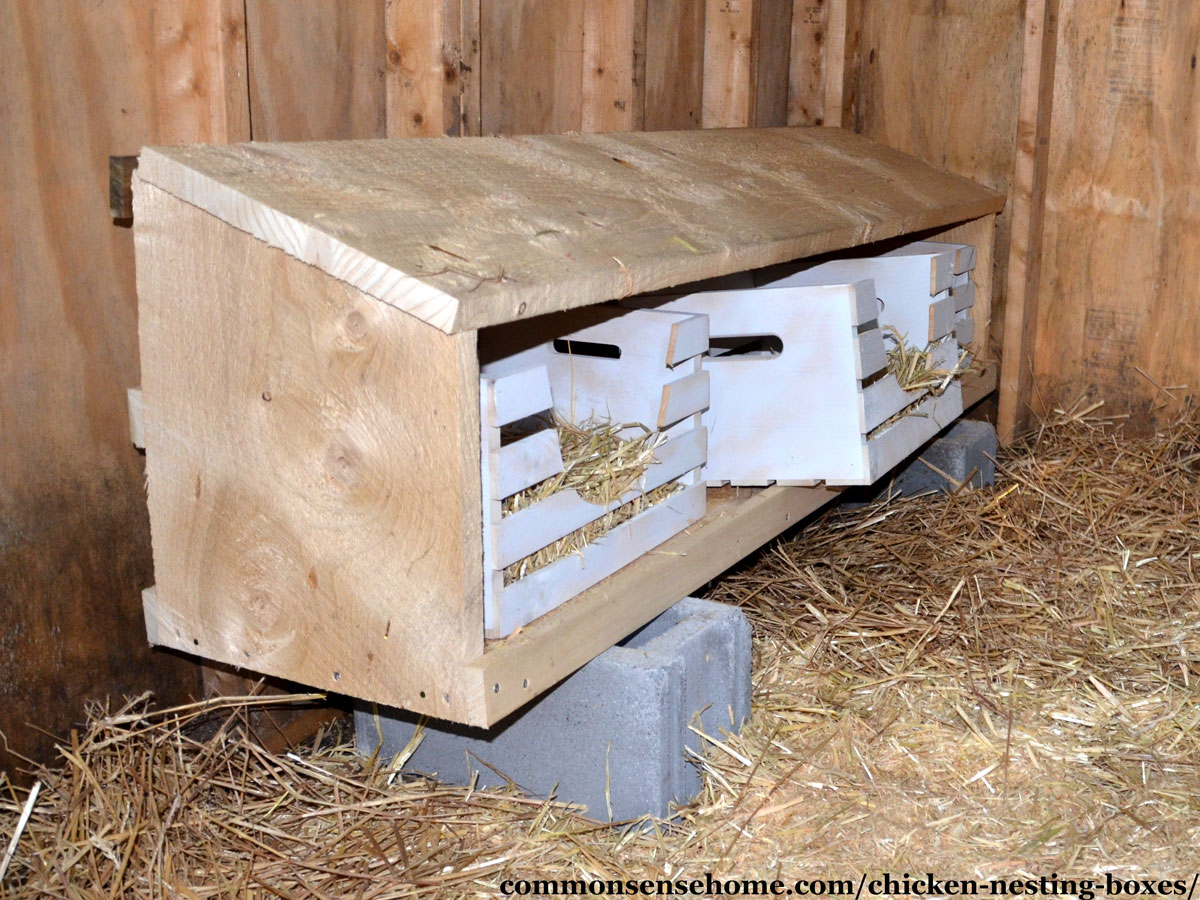 wooden crate nest boxes filled with straw