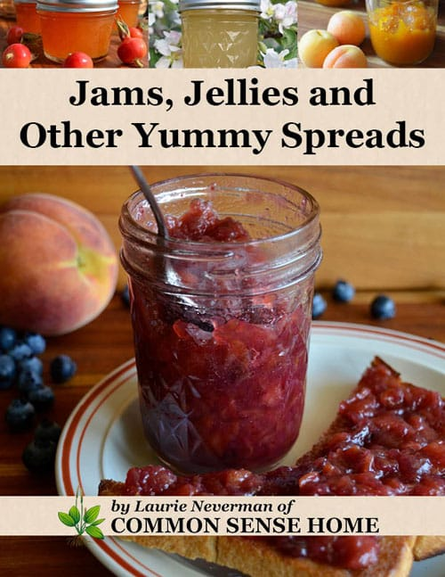 Jams, Jellies, and Other Yummy Spreads ebook