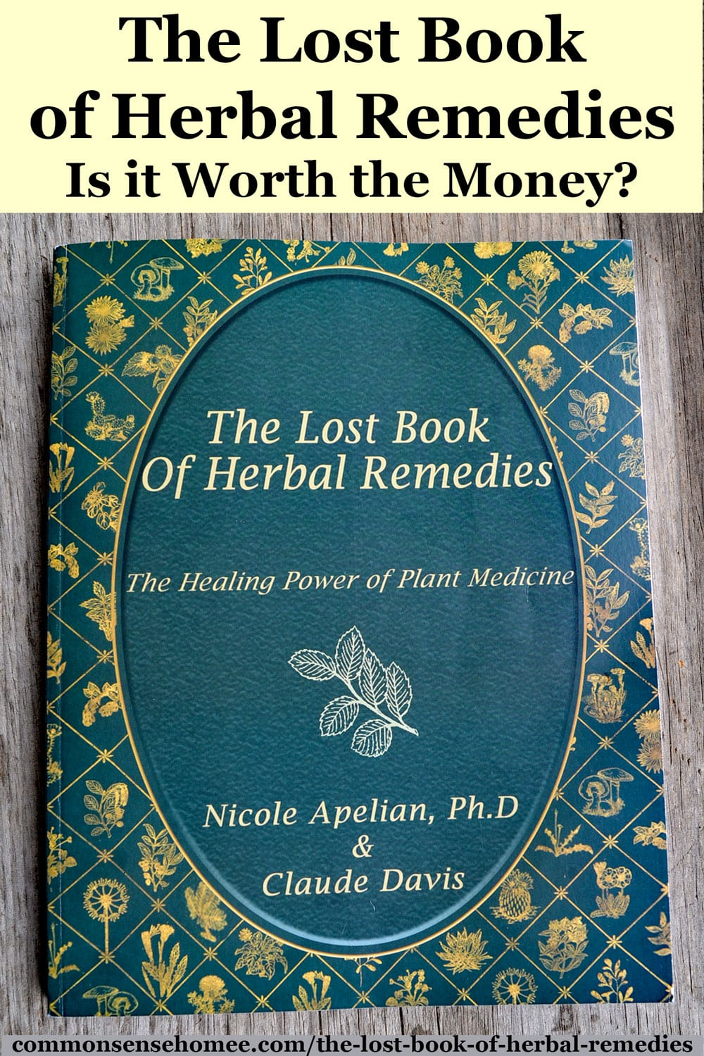 The Lost Book of Herbal Remedies Review - Worth the Money?