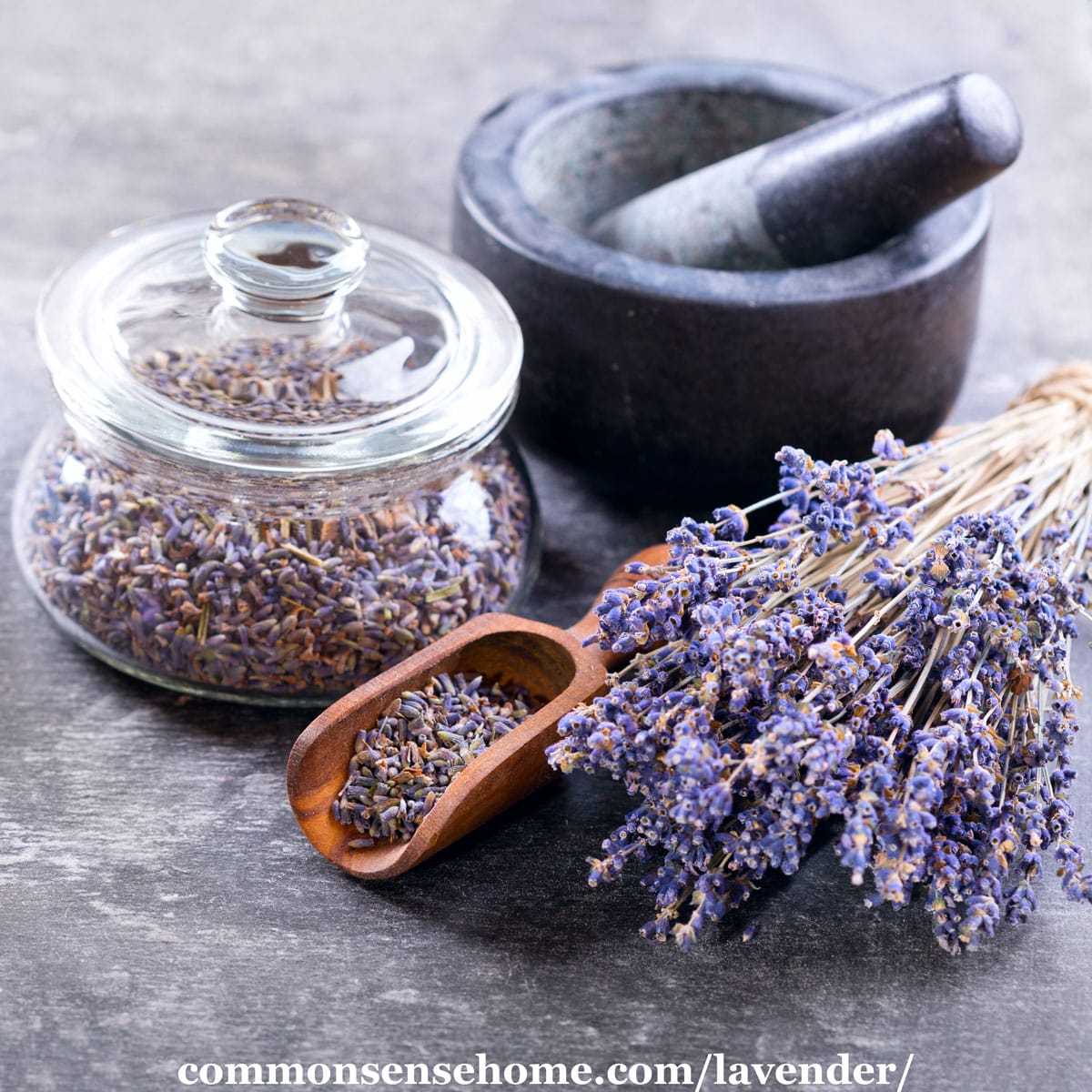 dried lavender blossoms for cooking, crafts, or medicine
