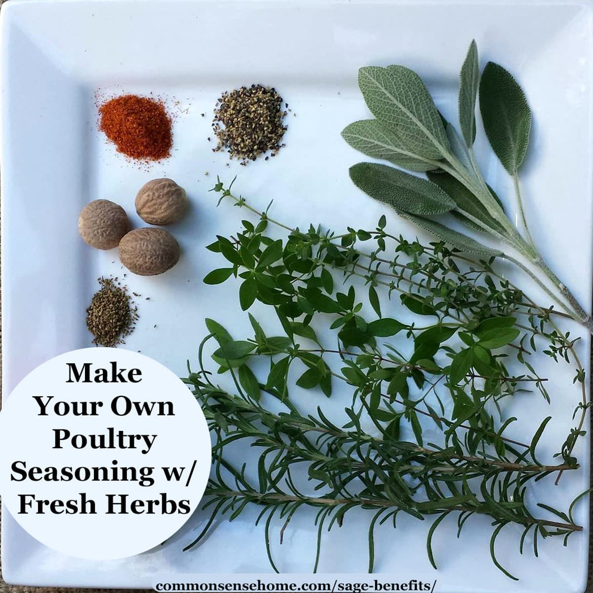 Ingredients for sage poultry seasoning made with fresh herbs