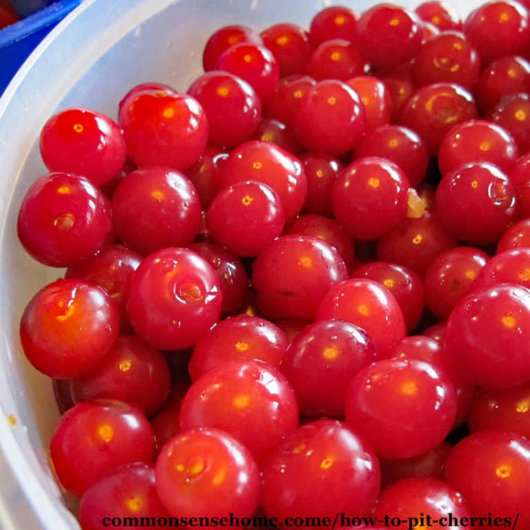 How to Pit Cherries Without a Cherry Pitter (Easy Video)
