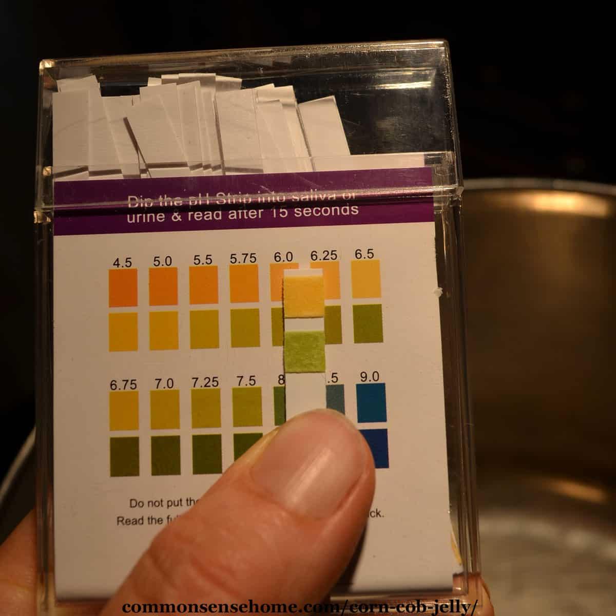 corn juice pH test results