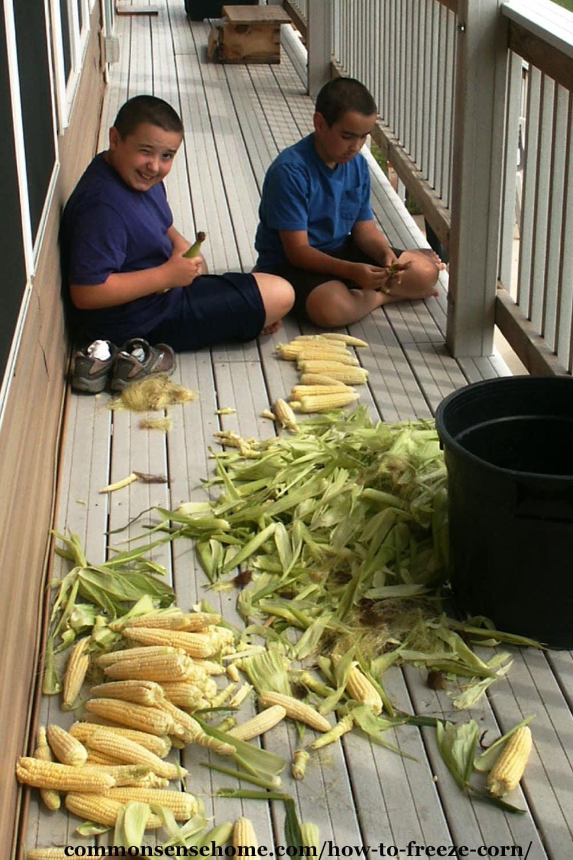 husking corn